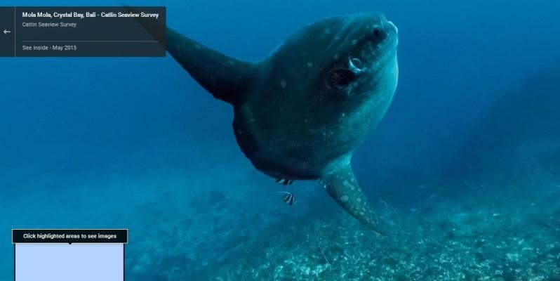 Google Street View se sumergió en el mar